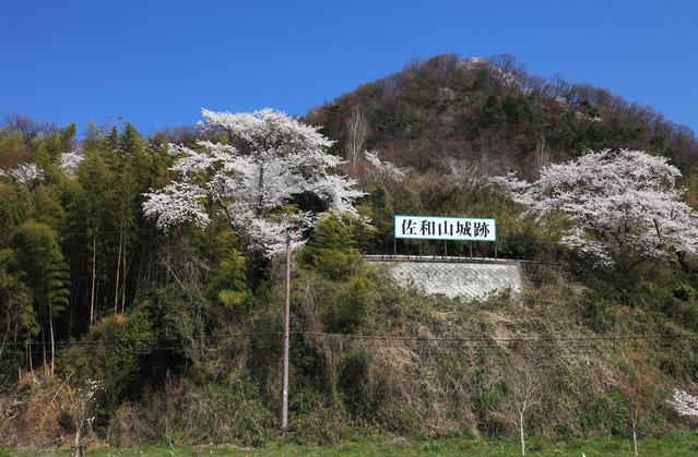 佐和山城跡 image