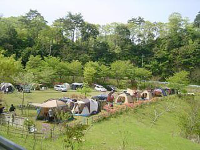 清和県民の森 image