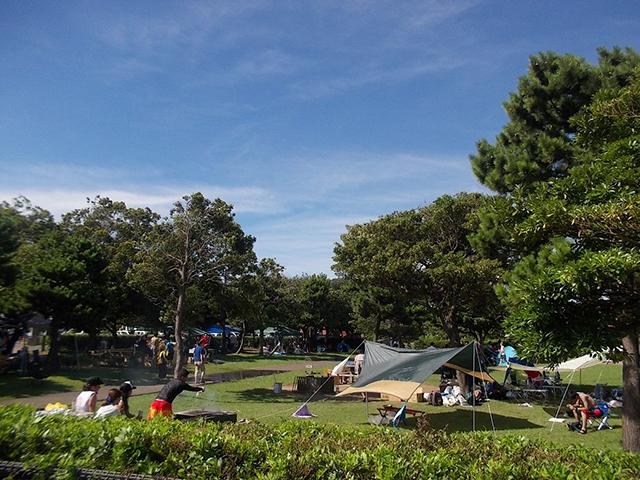 都立城南島海浜公園キャンプ場 image