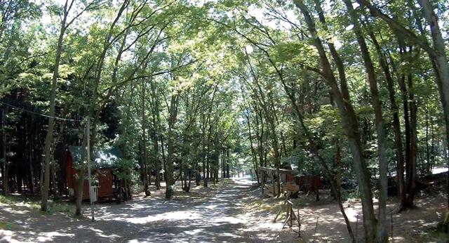 奥琵琶湖キャンプ場 image