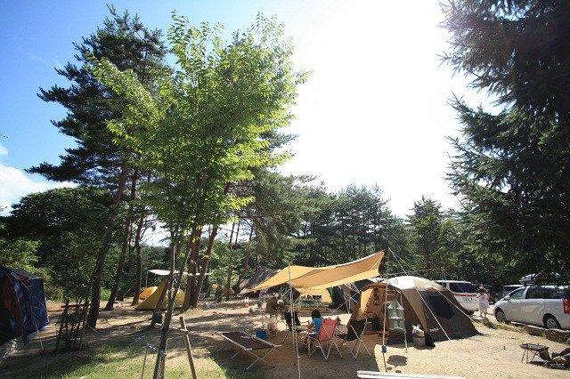 自然の森ファミリーオートキャンプ場 image