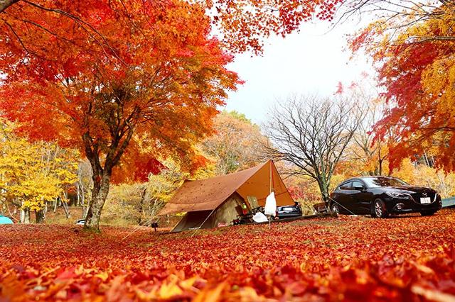 CHIKUSA Mountain Village(チクサ マウンテン ビレッジ) image