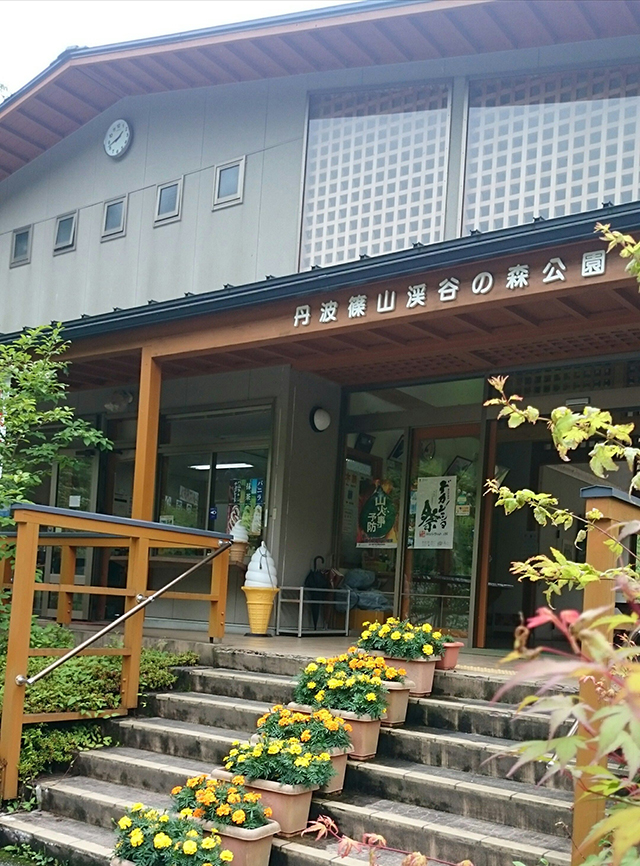 丹波篠山渓谷の森公園 image