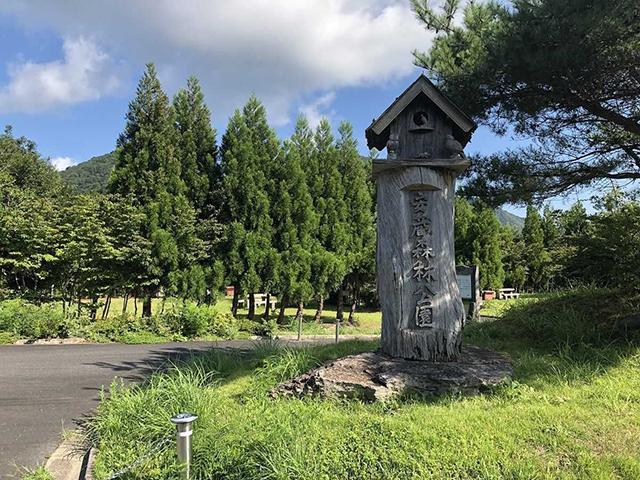 安蔵森林公園キャンプ場 image