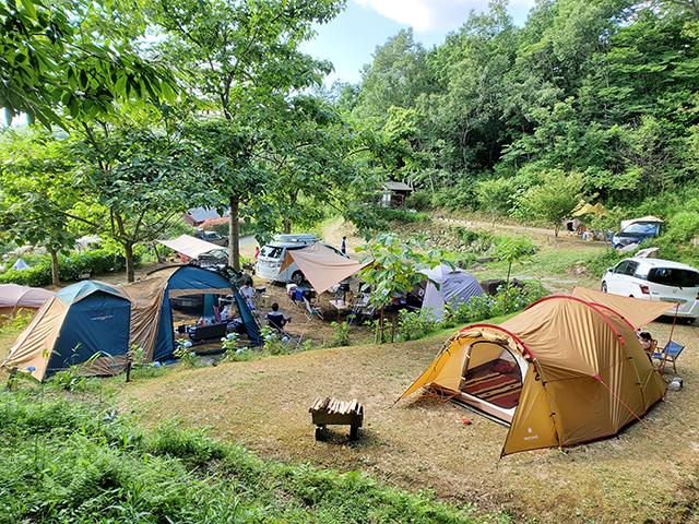 としおじさんのキャンプ場 image
