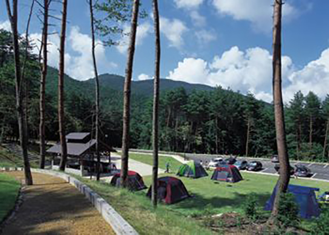 恐羅漢エコロジーキャンプ場 image