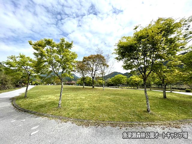 魚梁瀬森林公園オートキャンプ場 image