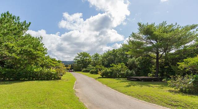 国頭村森林公園 image