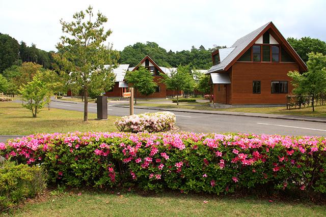 大子広域公園オートキャンプ場グリンヴィラ image