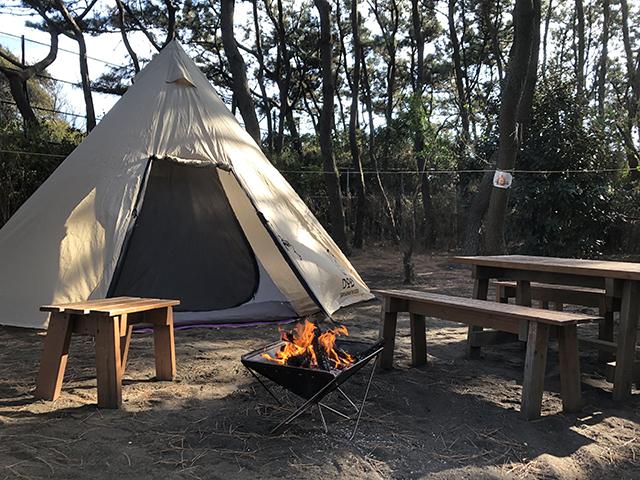 茅ヶ崎市柳島キャンプ場 image