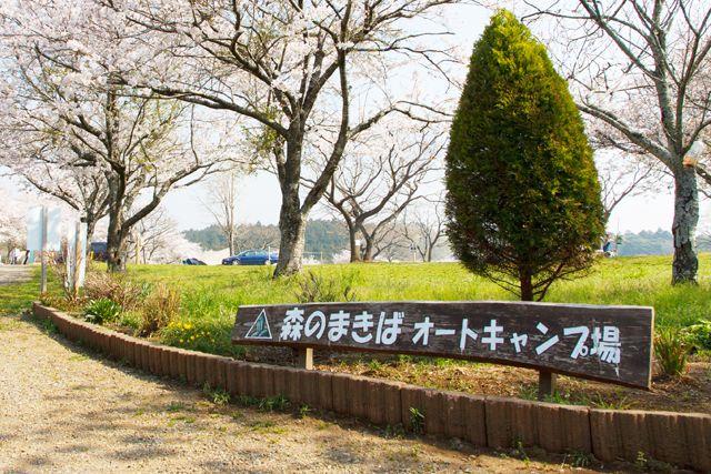 森のまきばオートキャンプ場 image