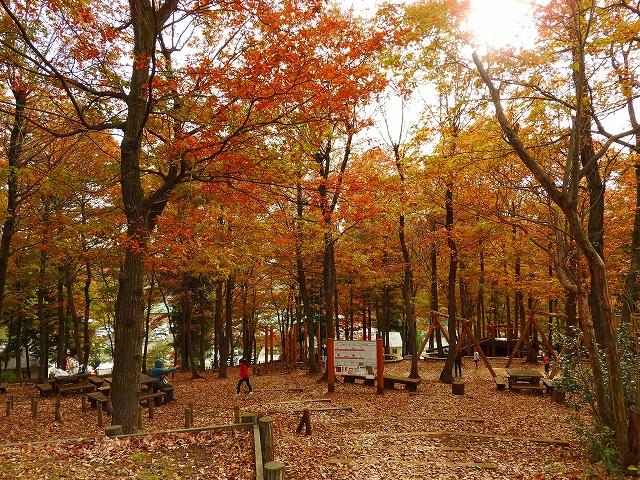 野山北・六道山公園