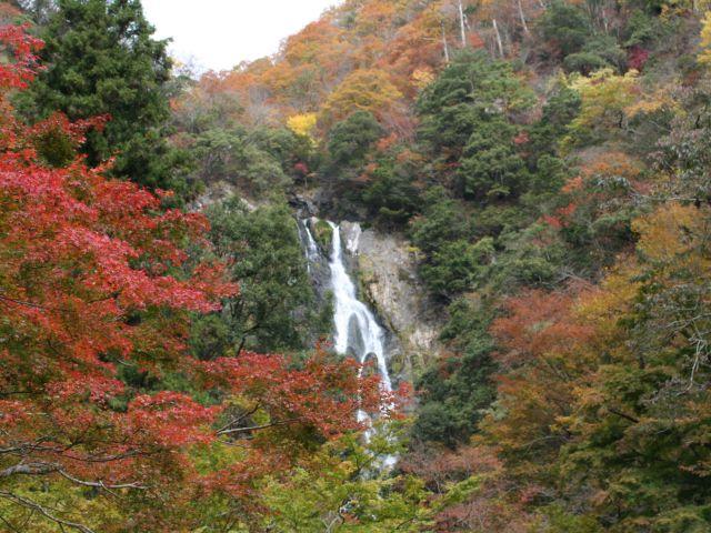 神庭の滝自然公園