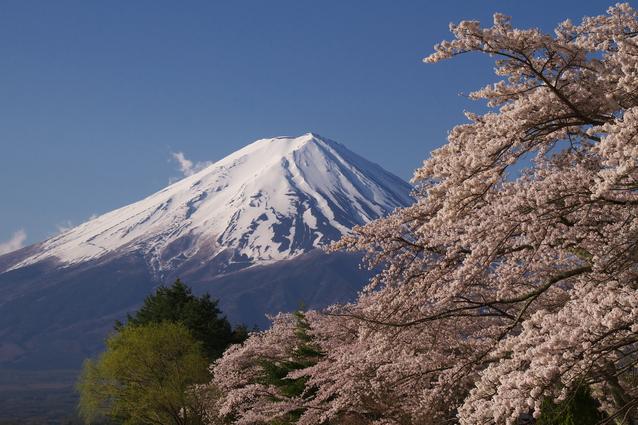 富士山 image