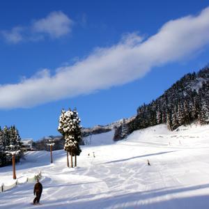 ハチ北高原スキー場 image