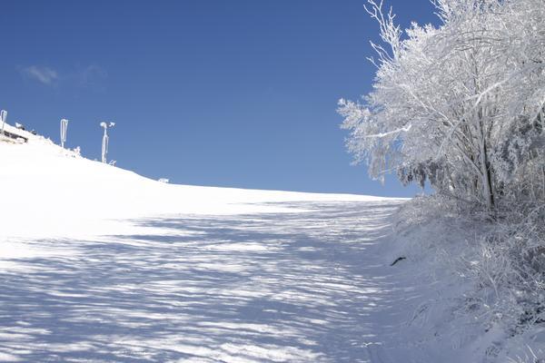 九重森林公園スキー場 image