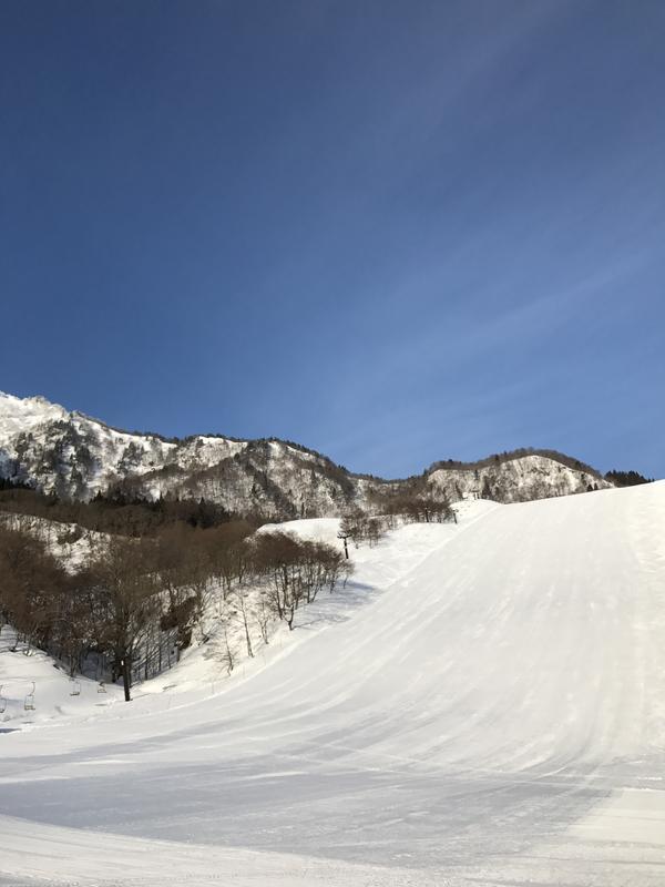 氷ノ山国際スキー場 image