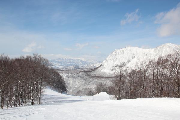 黒伏高原スノーパークジャングル・ジャングル image