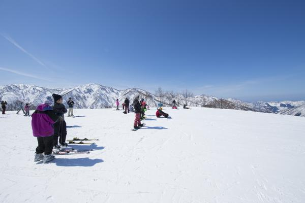 白山一里野温泉スキー場 image